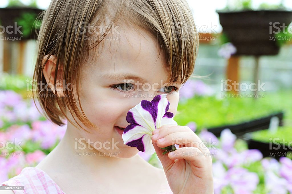 Smelling the Flower royalty-free stock photo