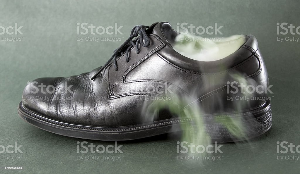 Smelly shoe. royalty-free stock photo