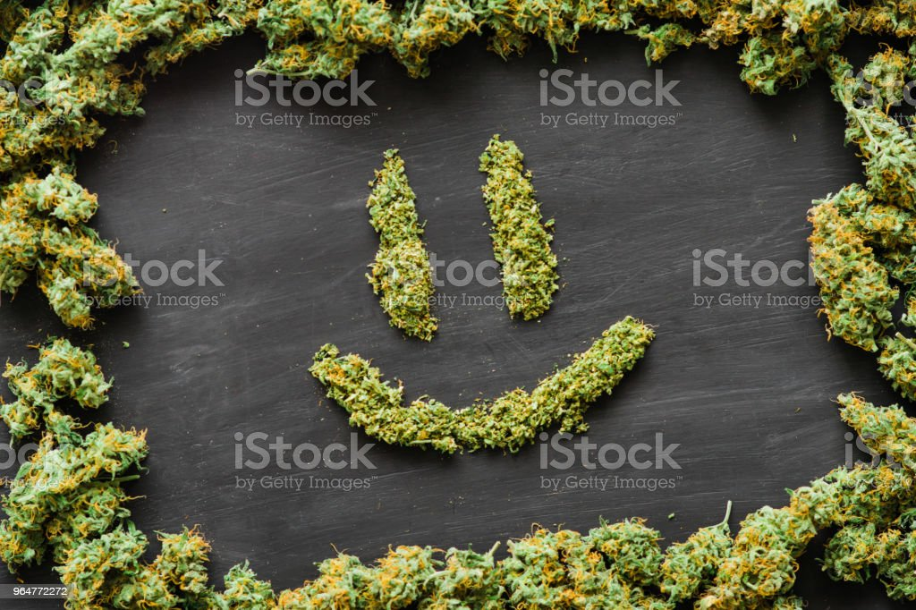 Smile of A lot of marijuana, fresh buds of cannabis many weed. Copy spase Copy-space royalty-free stock photo