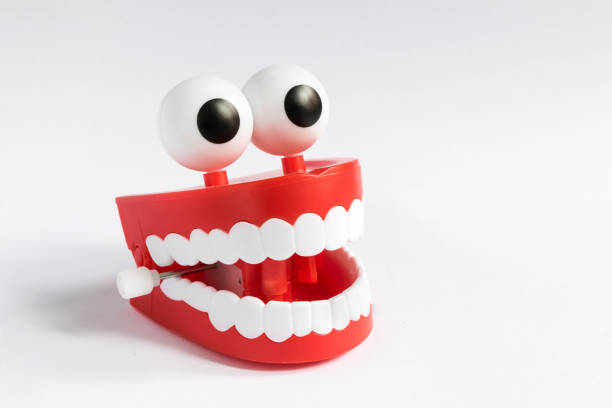 Smile! A false teeth denture with big eyes smiles cheesy grin stock pictures, royalty-free photos & images