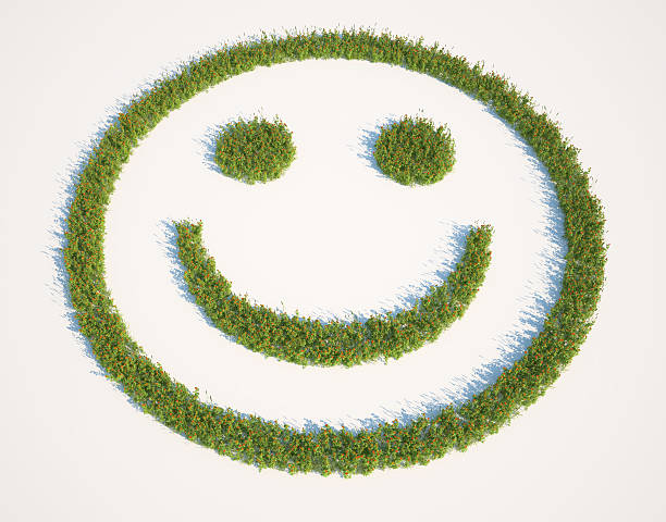 Smiley face grass patch stock photo
