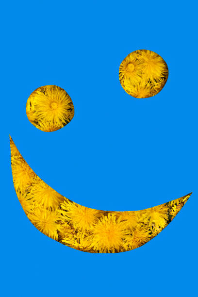 smiley from dandelions - people stencils silhouette stock photos and pictures