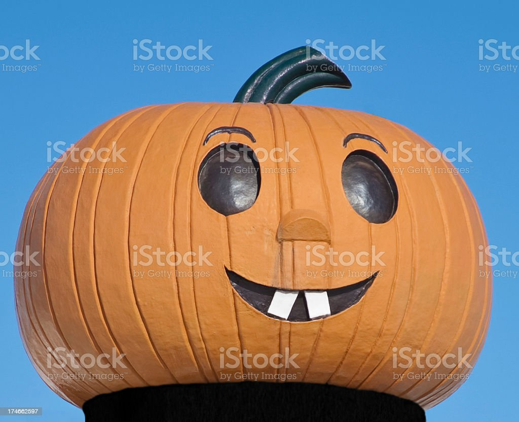 smiley pumkin in a turtleneck stock photo