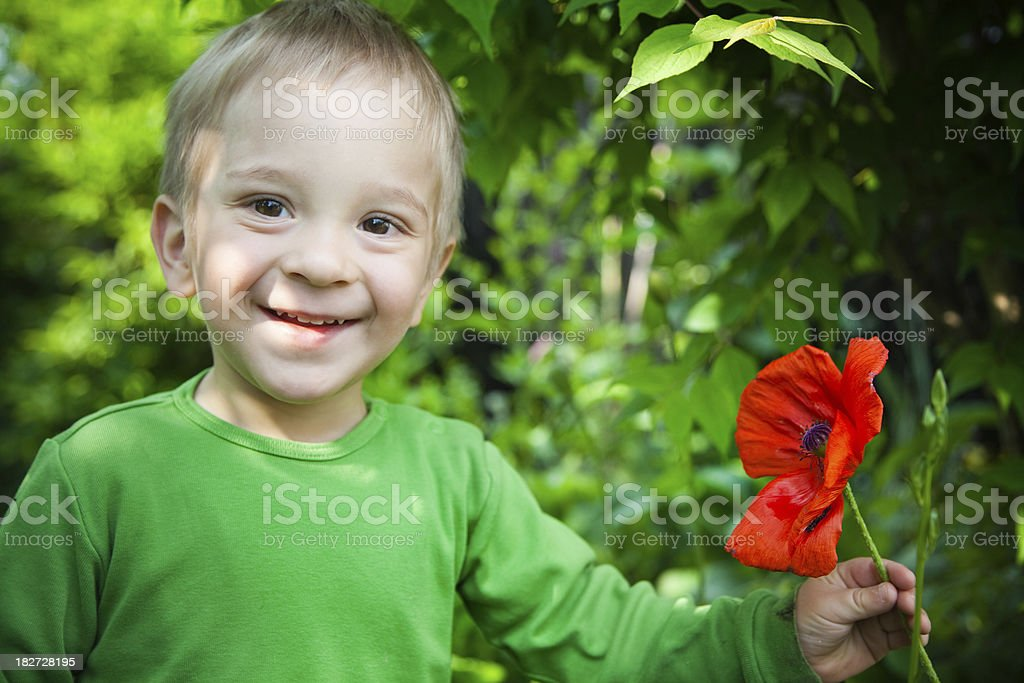 Smiling 2 years old boy with red poppy flower royalty-free stock photo