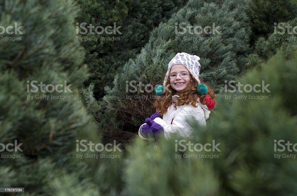 Smiling among the christmas trees stock photo