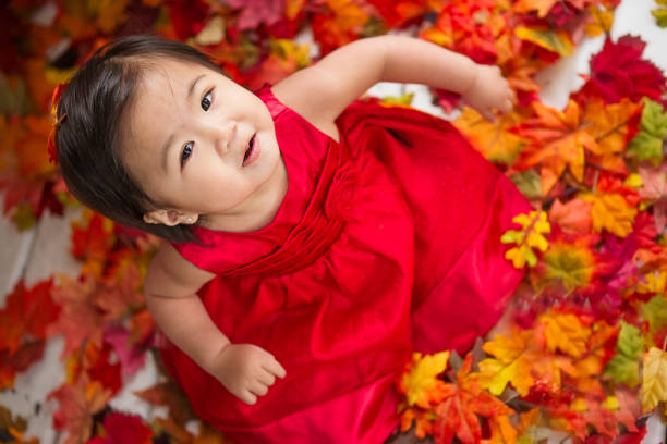 a136e82d3b5 Smiling asian toddler autumn portrait stock photo · Girl and her red ...