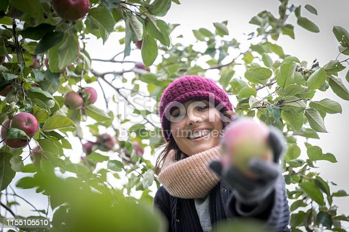 Smiling Beautiful Happy Woman Picking Apple