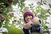 Smiling Beautiful Happy Woman Picking Apple