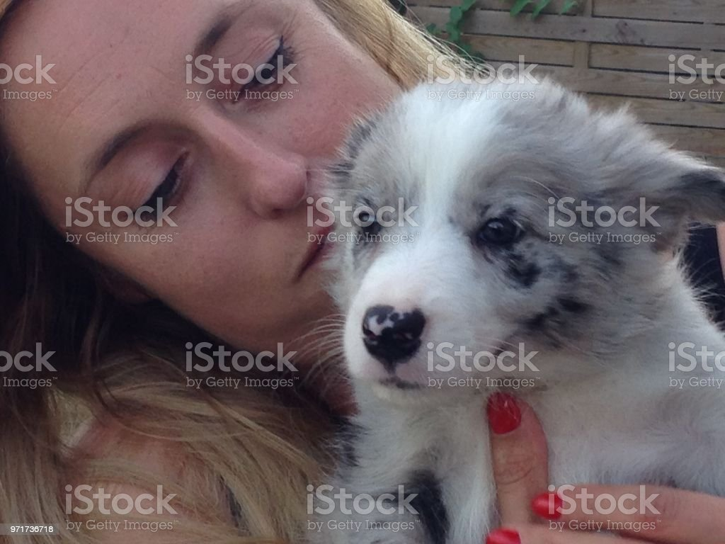 Smiling Blond Woman With A Blue Merle Border Collie Puppy Stock Photo Download Image Now Istock
