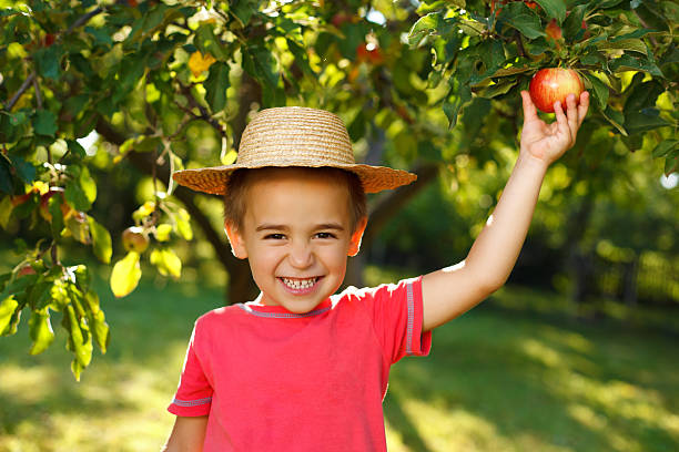 Smiling boy with apple stock photo