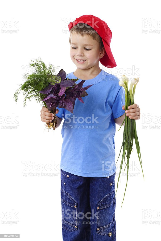 Smiling boy with onion and greens royalty-free stock photo