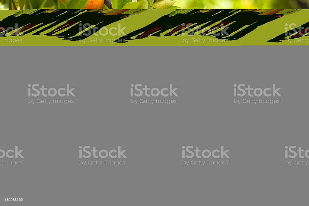 Smiling business group royalty-free stock photo