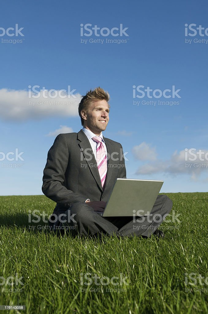 Smiling Businessman Types on Laptop in Bright Meadow royalty-free stock photo