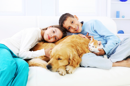 Smiling children embracing their pets: dog and cat, sleeping on the sofa.