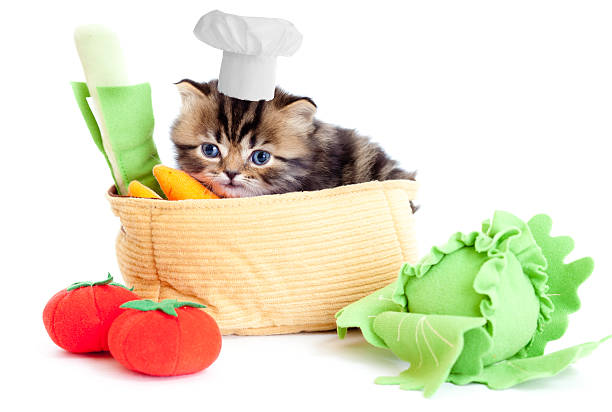Smiling cook kitten with toy vegetables isolated picture id113580051?b=1&k=6&m=113580051&s=612x612&w=0&h=i7abaet excvk7st0x67icvbkuqfyksbq 1ecuqhgjs=
