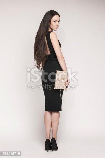 455111881istockphoto Smiling elegant woman holding gift 533519715
