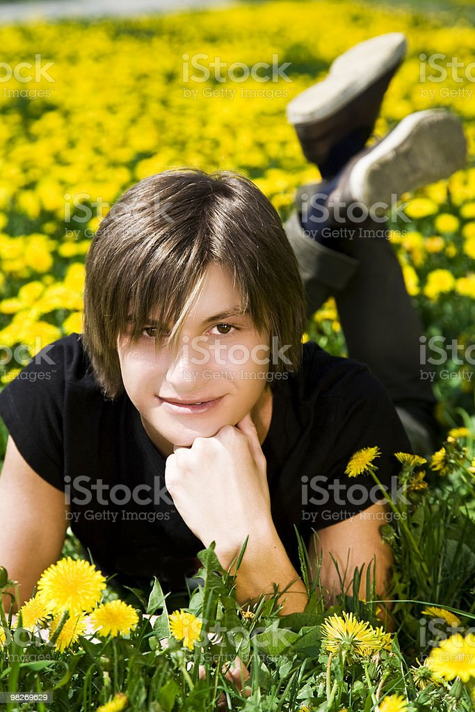 Smiling face royalty-free stock photo