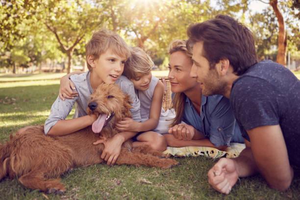 smiling family lying together with their dog in a park - mãe criança brincar relva efeito de refração de luz imagens e fotografias de stock