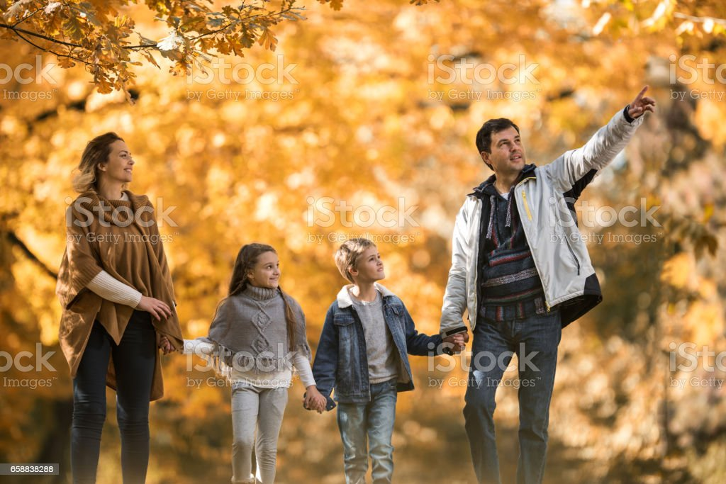Family holding hands and walking in the park while father is pointing...