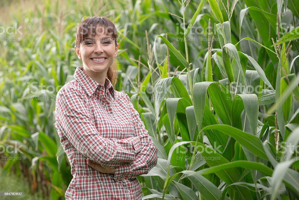 Agriculteur souriante posant dans le champ de maïs - Photo