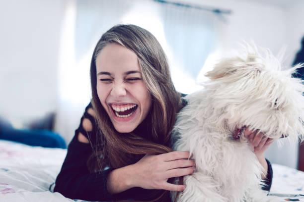 lächelnde frau spaß mit ihrem pudelhund im bett - marvel schlafzimmer stock-fotos und bilder