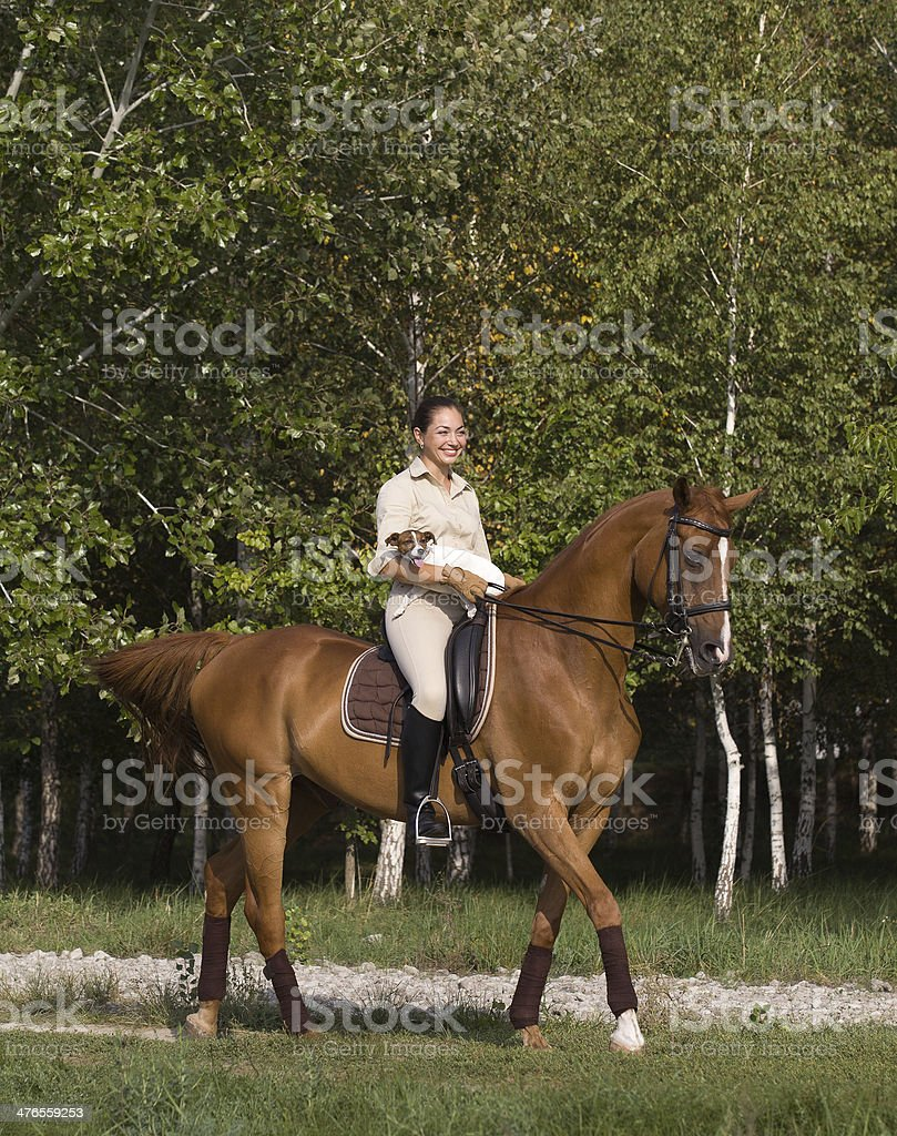 Smiling girl rides a horse with dog royalty-free stock photo