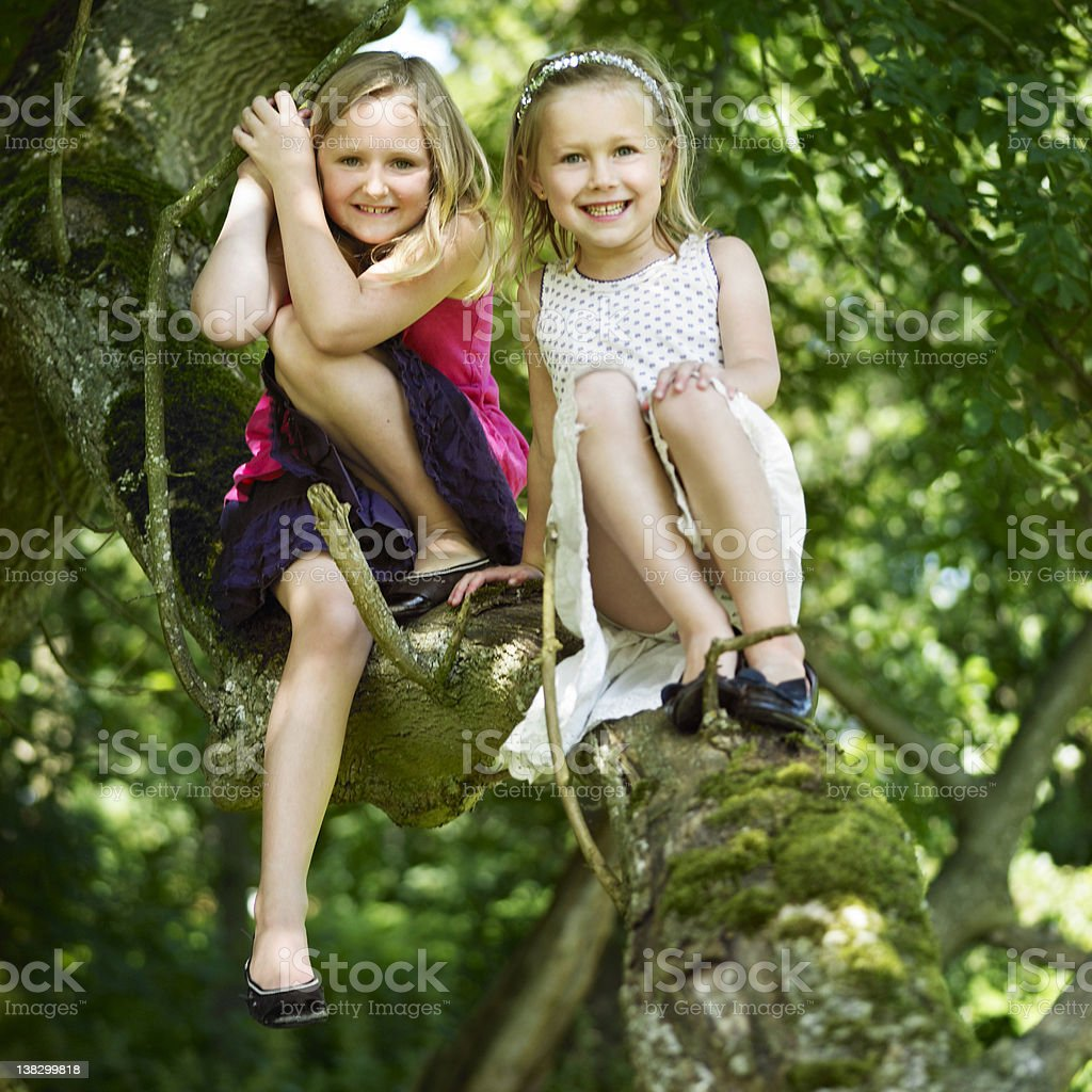 Smiling girls sitting in tree stock photo