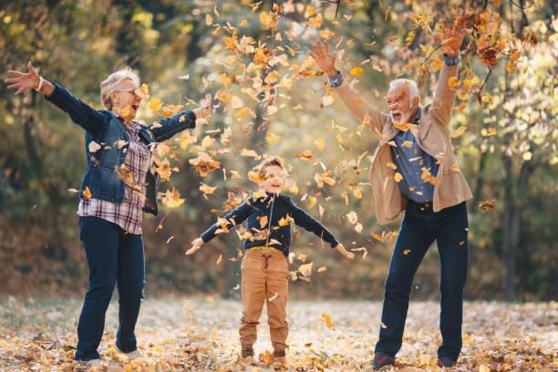 Smiling grandson walking through autumn park with grandparents. Smiling grandson walking through autumn park with grandparents. grandson stock pictures, royalty-free photos & images