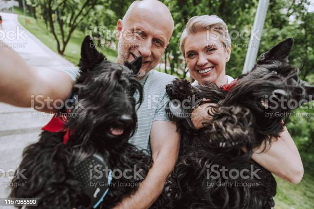 Smiling grayhaired couple with two black dogs in park picture id1157988890?b=1&k=6&m=1157988890&s=612x612&h=1hzw9ez en0xc pwse bkrohypv6wmbq8xu44yy5ywk=