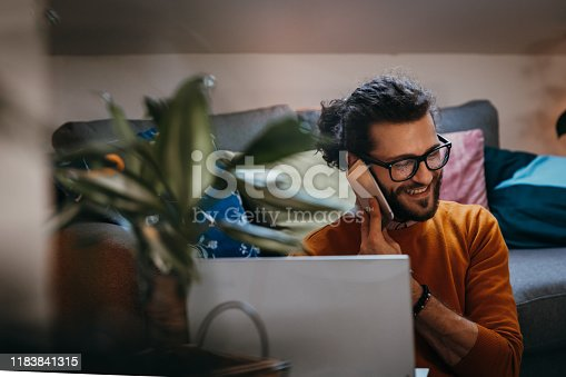 944652612 istock photo Smiling handsome freelancer working with laptop 1183841315