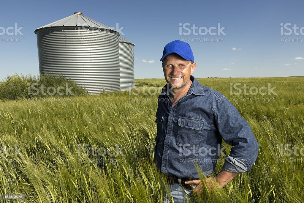 Smiling in a Wheatfield royalty-free stock photo