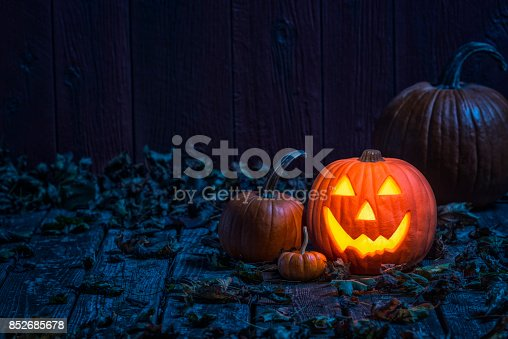 A glowing smiling Jack O' Lantern sitting on an old weathered wooden deck under the blue moon light. There are various size pumpkins and gourds sitting within the Fall leaves with a barn wall in the background.