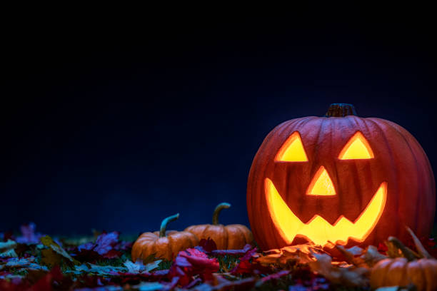 A smiling Jack O' Lantern sitting in the grass with small pumpkins and fallen leaves at night for Halloween