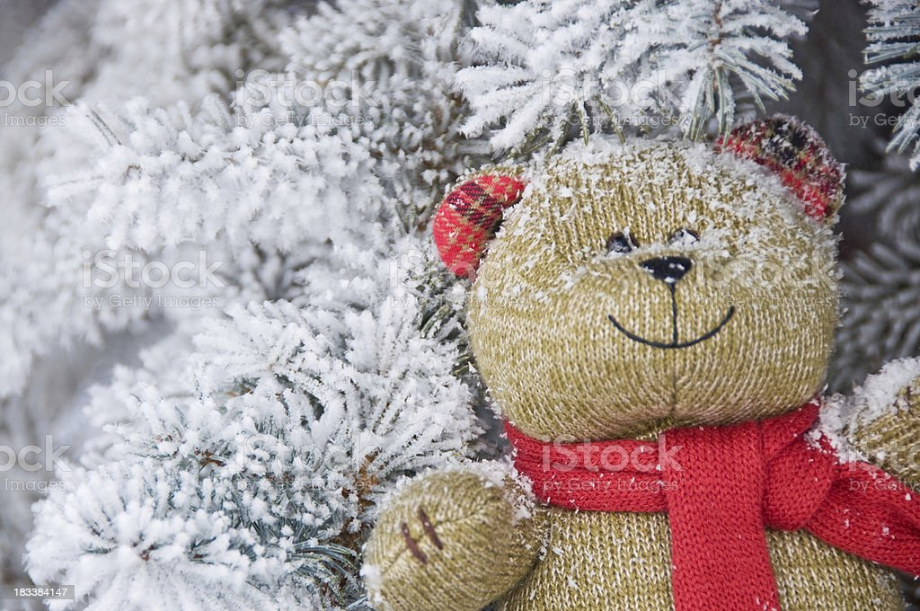 Smiling knitted teddy bear toy nestled in snowy branches stock photo