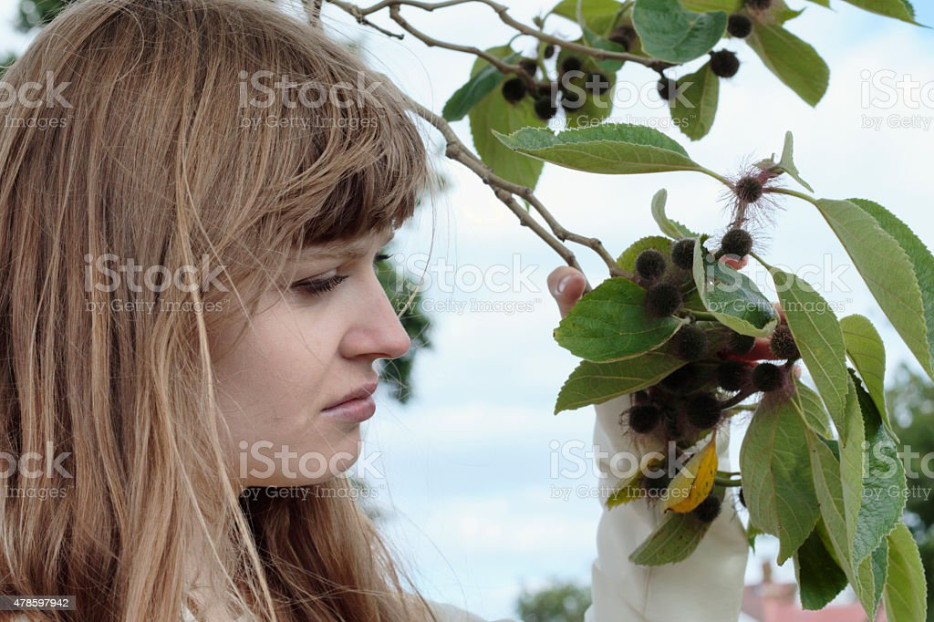 Smiling Latvian tree girl next to paper mulberry tree stock photo