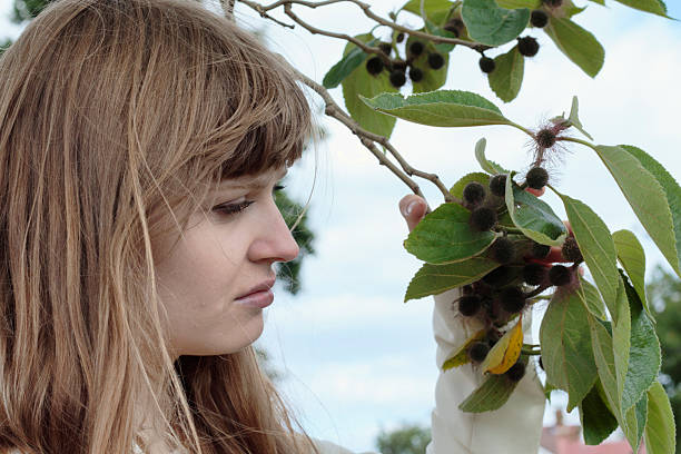 smiling latvian tree girl next to paper mulberry tree - whiteway latvian outdoor girl stock photos and pictures