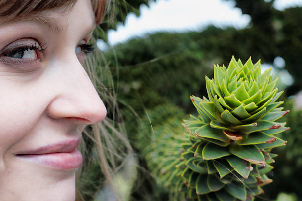 smiling latvian tree girl next to monkey puzzle branch - whiteway latvian outdoor girl stock photos and pictures