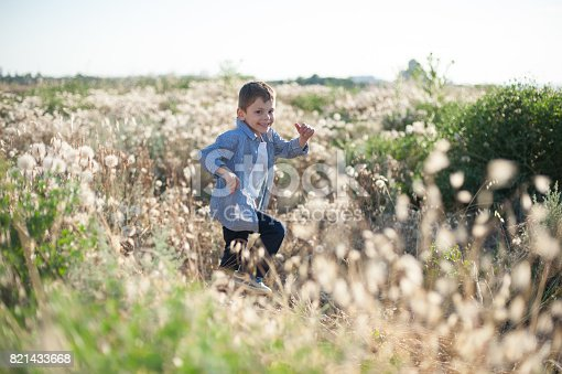 istock smiling little boy running in the field amongst the plants 821433668