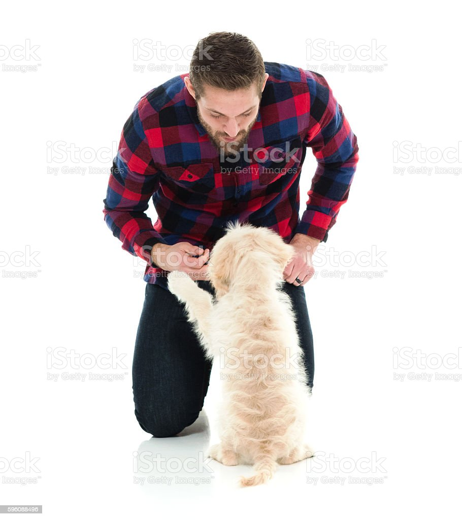 Smiling man playing with his dog royalty-free stock photo