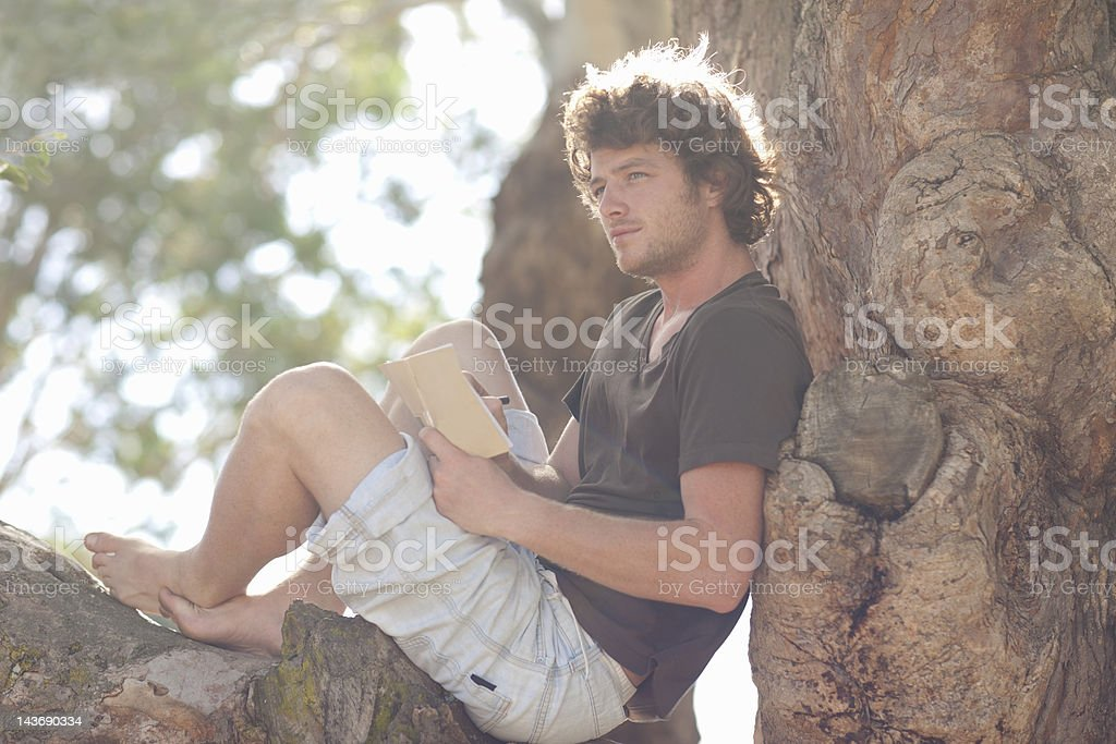 Smiling man reading in tree stock photo