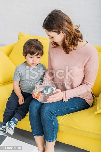 109350576 istock photo smiling mother holding fish bowl while sitting on yellow sofa with adorable son 1149518245