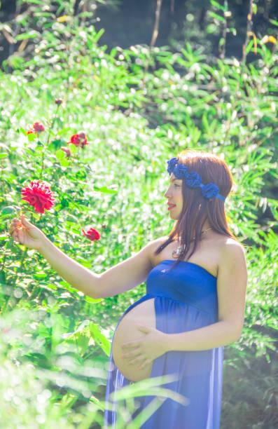 schwangere frau in einem park mit blauen drees, wobei eine rote rose, sonnenlicht lächeln - drees und sommer stock-fotos und bilder