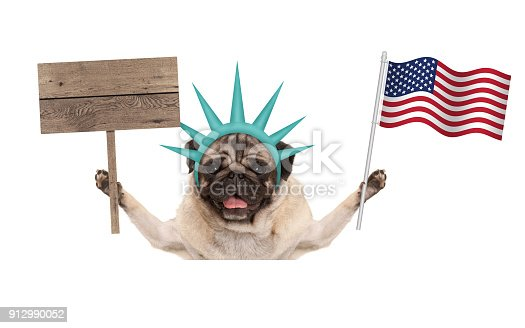 istock smiling pug puppy dog holding up American flag and blank wooden sign, wearing lady Liberty crown, isolated on white background 912990052