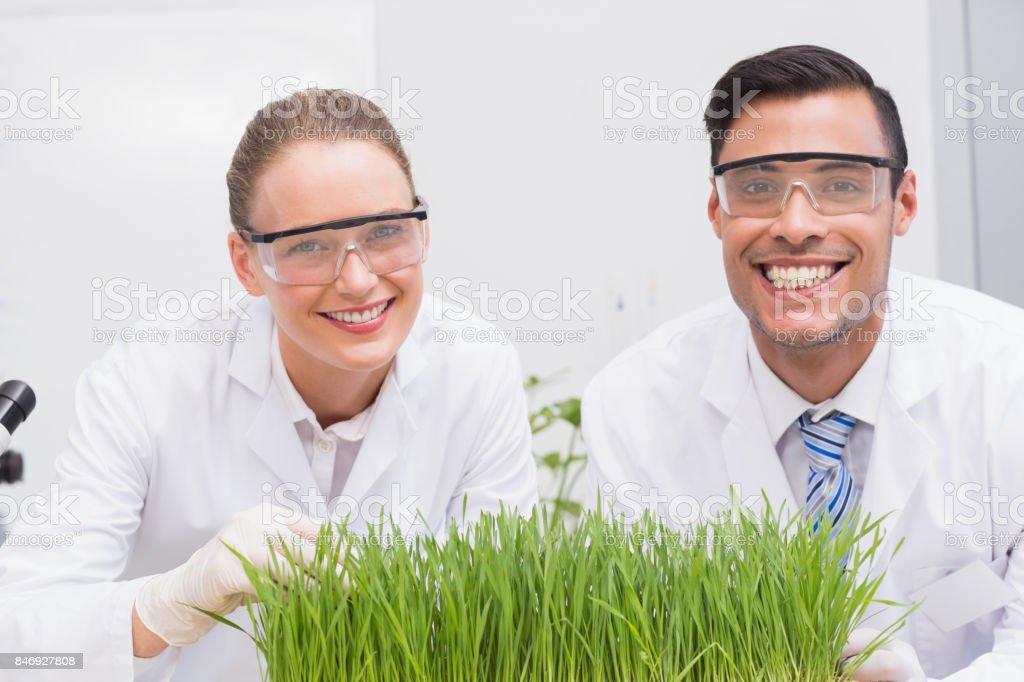 Smiling scientists examining plants stock photo