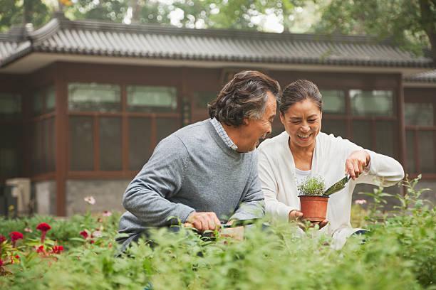 Smiling senior couple in a garden stock photo