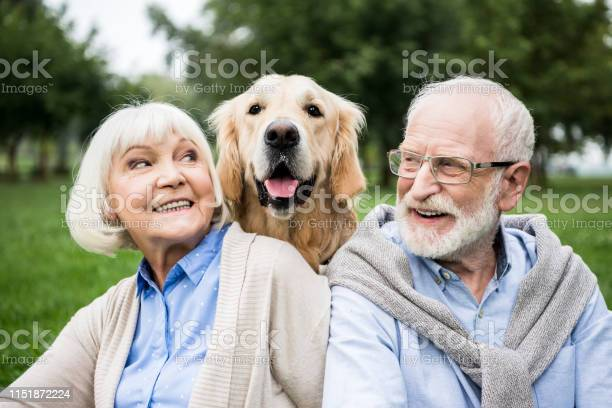 Smiling senior couple looking at adorable dog while resting in park picture id1151872224?b=1&k=6&m=1151872224&s=612x612&h=53mlp8lzj22oxfj5djwabmz e0gzpdzytbgk2w1p5n8=