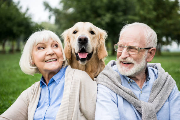 smiling senior couple looking at adorable dog while resting in park - happy dog imagens e fotografias de stock