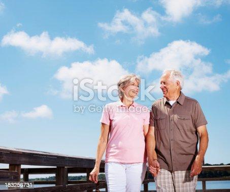510491454 istock photo Smiling senior couple walking on a sunny day 183256731
