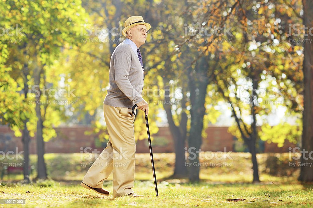 Smiling senior gentleman walking with a cane in park stock photo