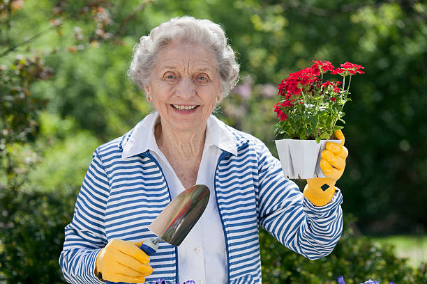 Smiling Senior Woman Holding Flowers stock photo